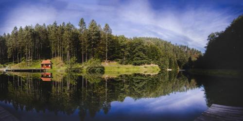 Untitled Panorama1 copyg (Small)